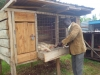 feeding-the-chickens-jpg